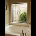 San Antonio Privacy Glass